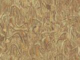 Van Gogh2 220051
