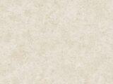 Arlequin 54298-8